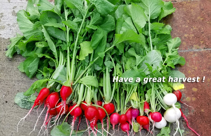 Have a great harvest, Hydros, Environmental Diagnostics, Bourne, MA